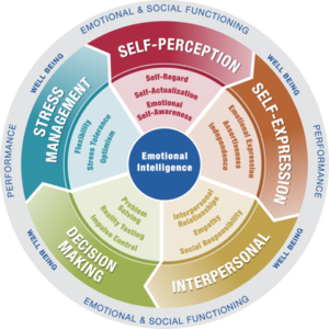 Certification Workshops on Emotional Intelligence
